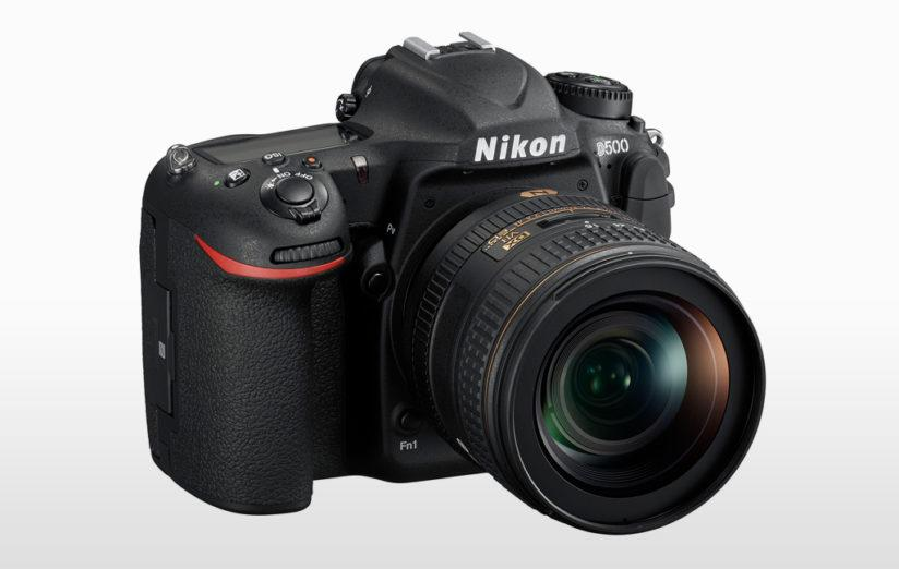 cameras for wildlife photography: nikon d500