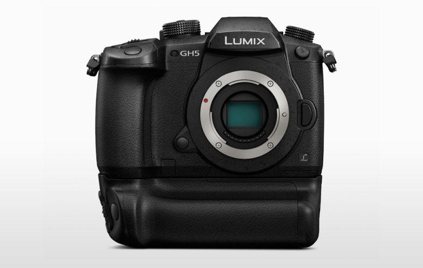 cameras for wildlife photography: panasonic lumix gh5