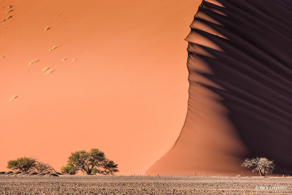 "Today's Photo Of The Day is ""D45 sand dune"" by Nick Lefebvre. Location: Taken on the drive from Walvis Bay to Sossusvlei in Namibia."