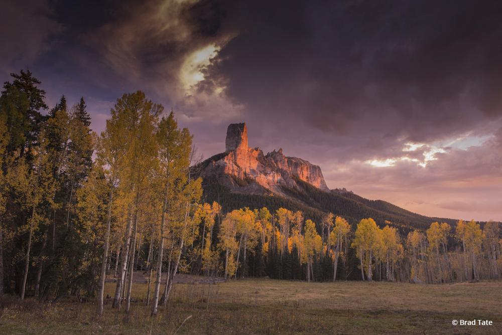 "Today's Photo Of The Day is ""True Grit"" by Brad Tate. Location: Uncompahgre National Forest, Colorado."