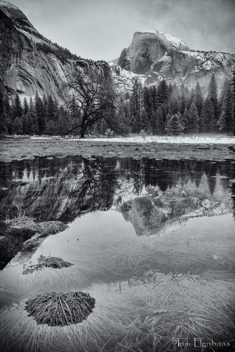 "Today's Photo Of The Day is ""Half Dome Reflection"" By Tom Elenbaas. Location: Yosemite National Park, California."