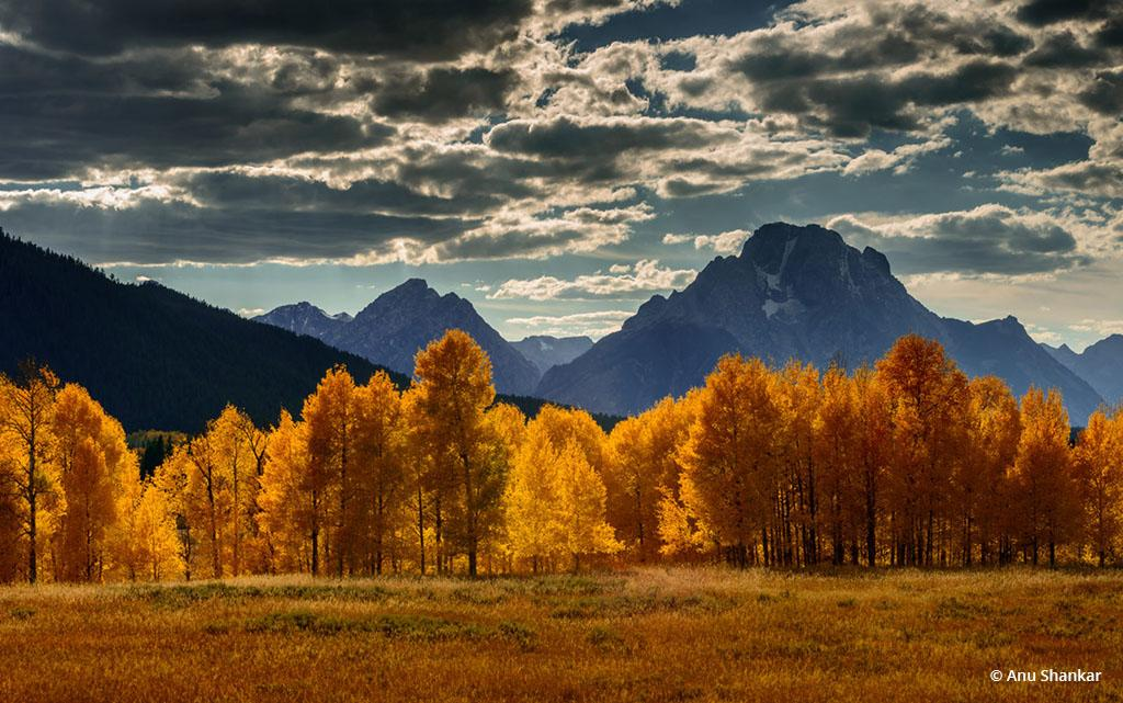 """Today's Photo Of The Day is """"Orange Glow"""" by Anu Shankar. Location: Grand Teton National Park, Wyoming."""