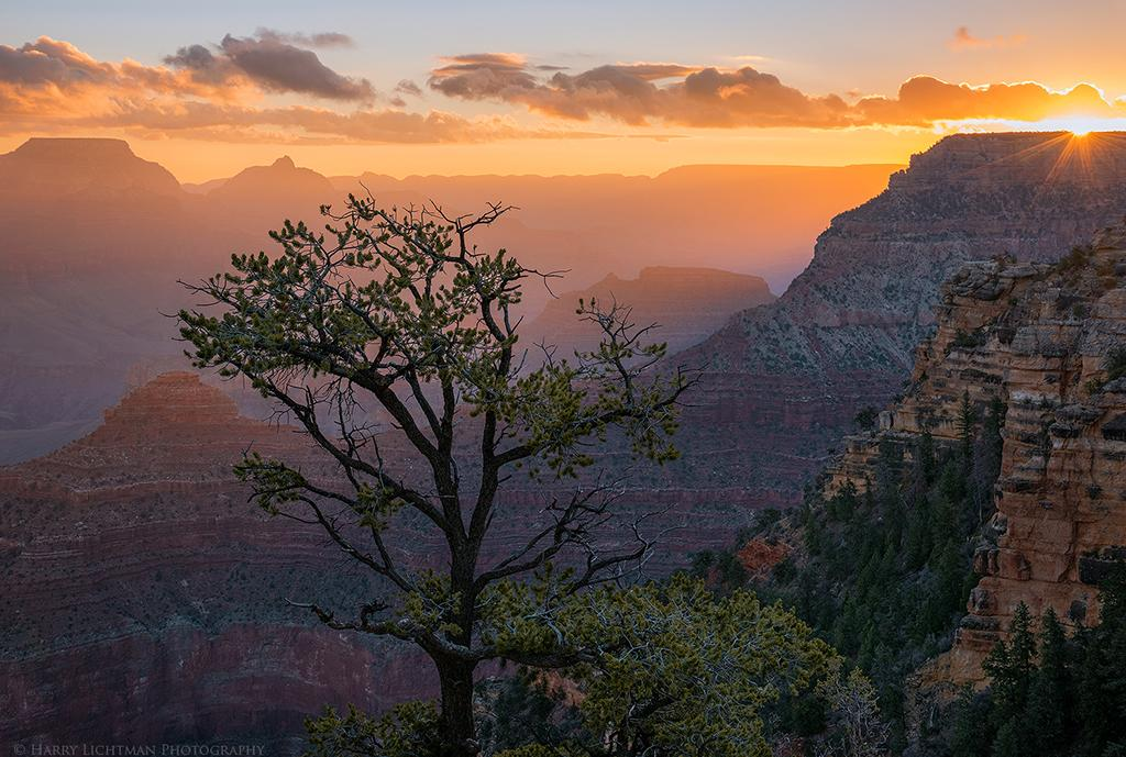 "Today's Photo Of The Day is ""Grand Daybreak"" by Harry Lichtman. Location: Grand Canyon National Park, Arizona."