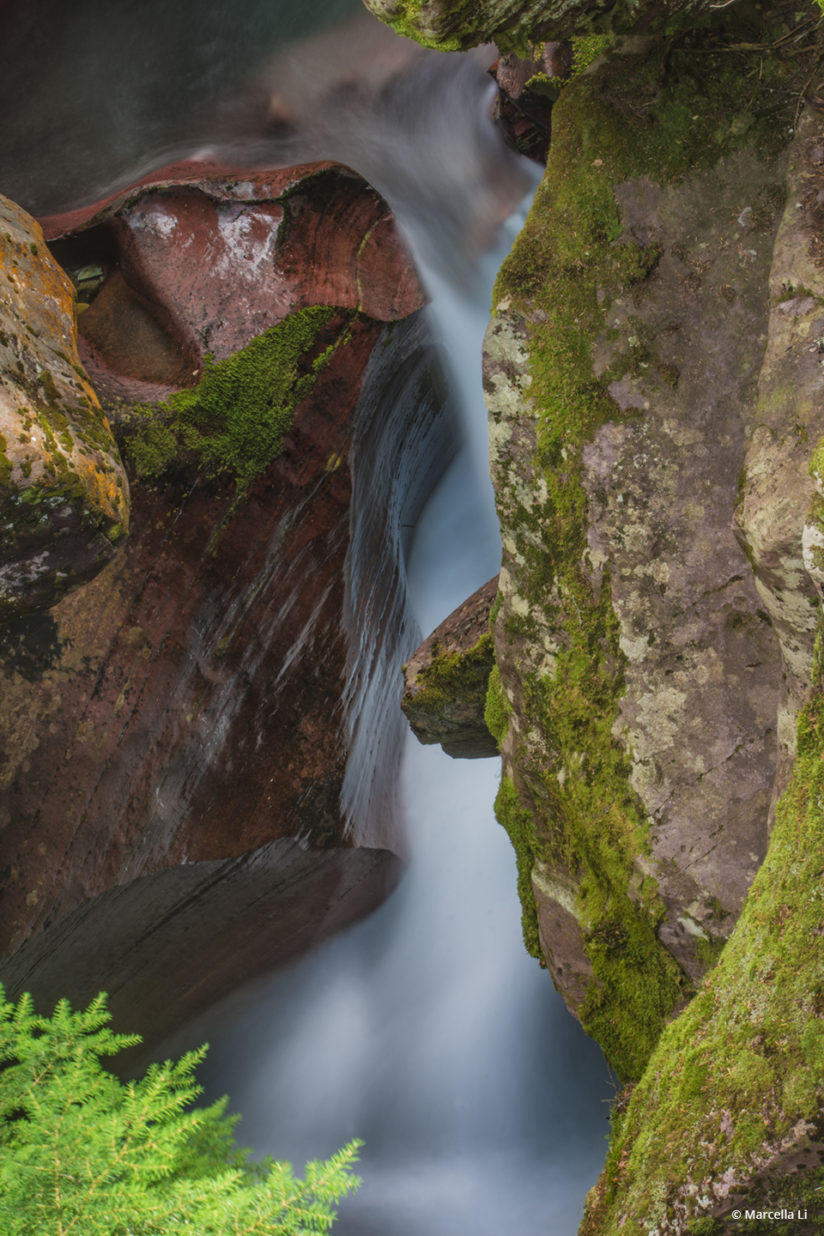 """Today's Photo Of The Day is """"Avalanche Creek"""" by Marcella Li. Location: Montana."""