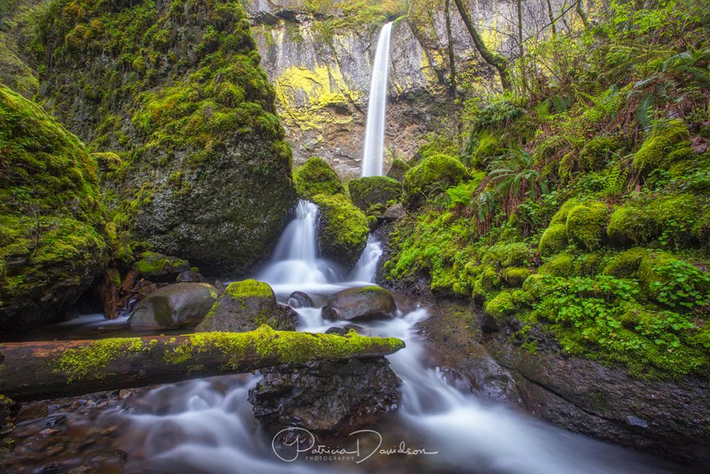 "Today's Photo Of The Day is ""Elowah Falls"" by Patricia Davidson. Location: Columbia River Gorge National Scenic Area, Oregon."