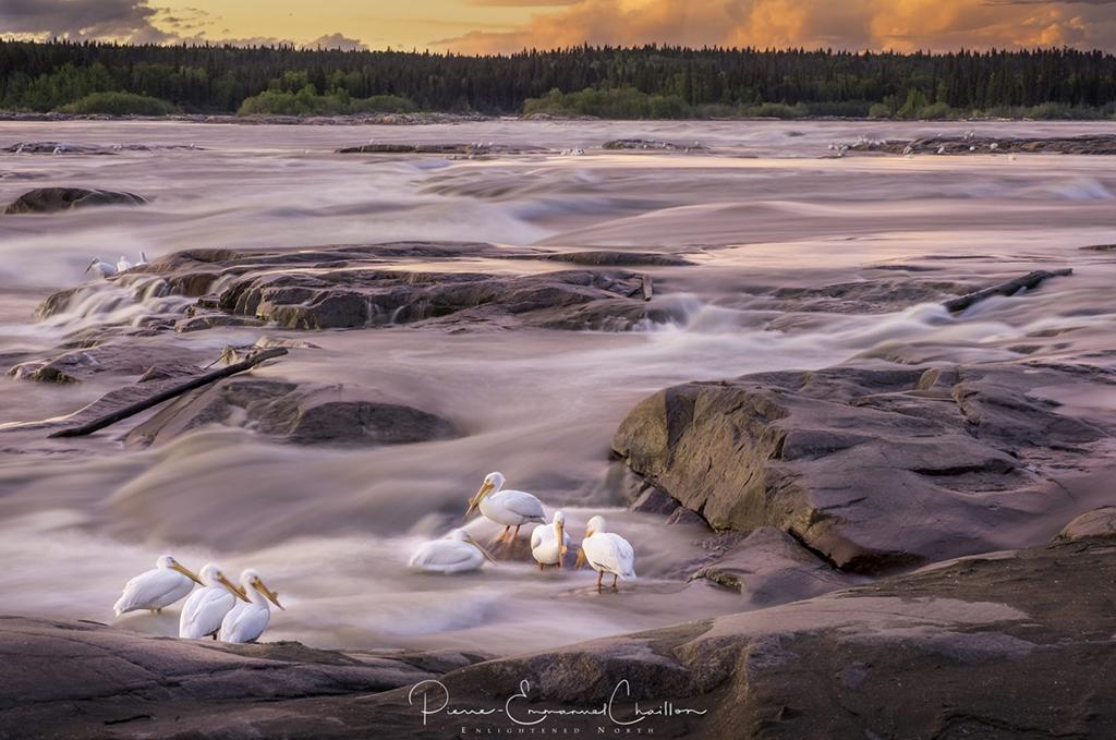 """Today's Photo Of The Day is """"Life Is A Long, Quite River"""" by Pierre-Emmanuel Chaillon. Location: Fort Smith, Northwest Territories, Canada."""