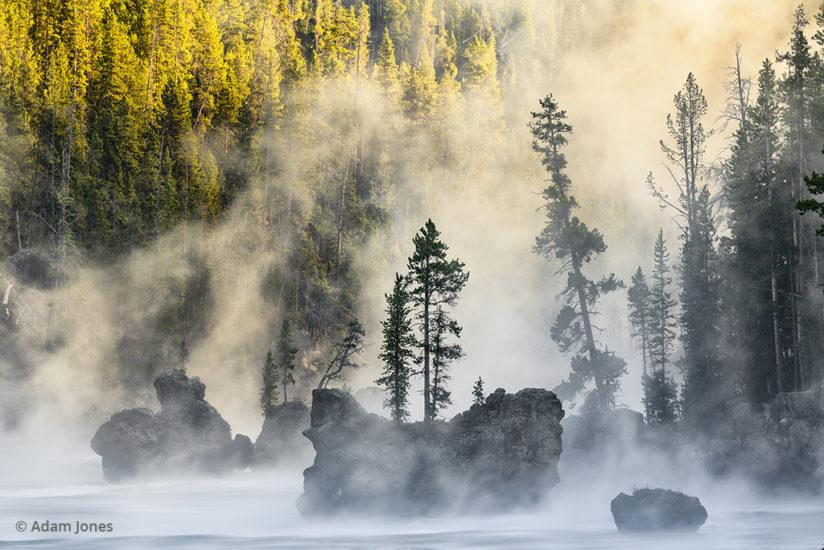 Boulders and trees in steaming Yellowstone River at sunrise, Yellowstone