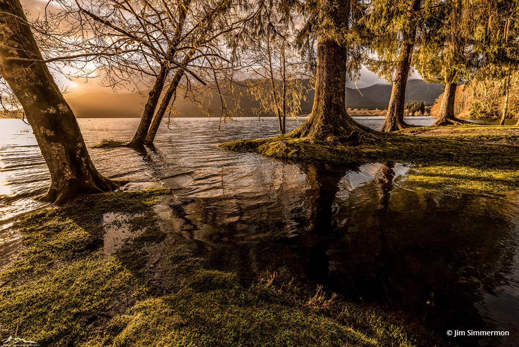 """Today's Photo Of The Day is """"Serenity"""" by Jim Simmermon. Location: Olympic National Park, Washington."""
