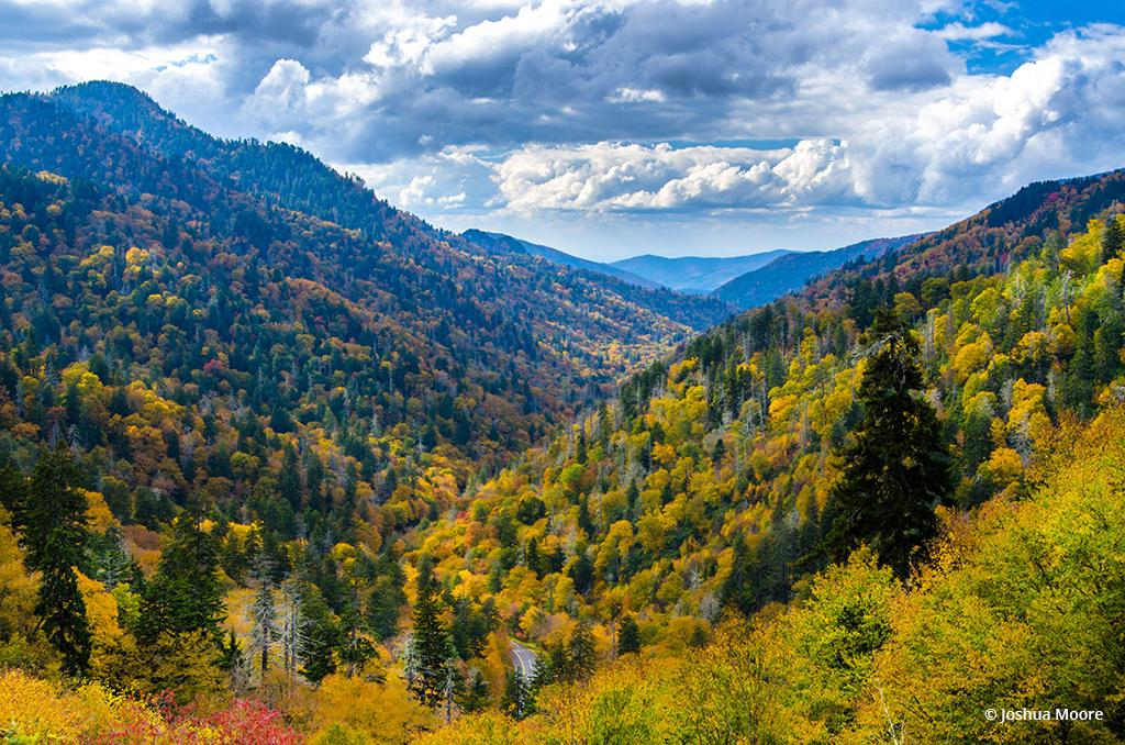 """Today's Photo Of The Day is """"Autumn from Morton"""" by Joshua Moore. Location: Morton Overlook, Great Smoky Mountains National Park, Tennessee."""