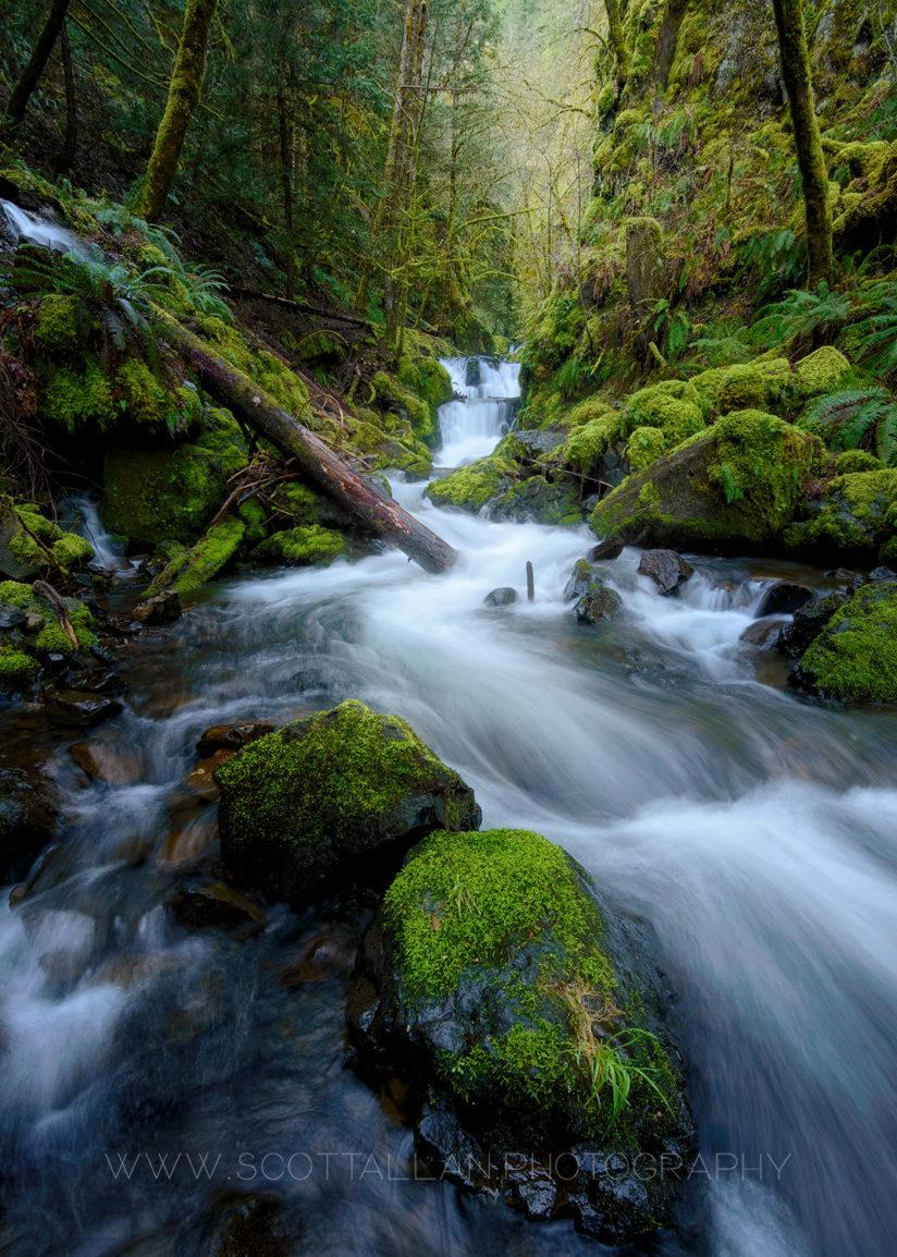 """Today's Photo Of The Day is """"Approaching The Falls"""" by Scott Allan. Location: Hood River, Oregon."""