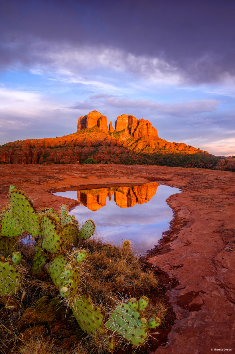 "Today's Photo Of The Day is ""Last Glow On Cathedral Rocks"" by Theresa Ditson. Location: Sedona, Arizona."