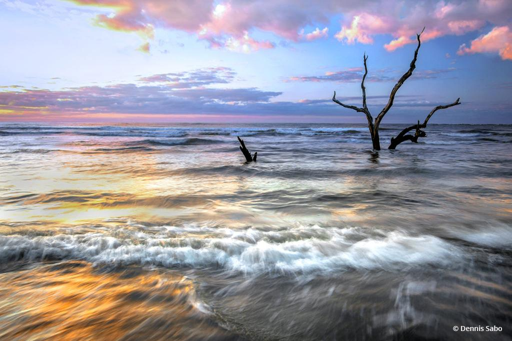 """Today's Photo Of The Day is """"That Moment"""" by Dennis Sabo. Location: Capers Island, South Carolina."""