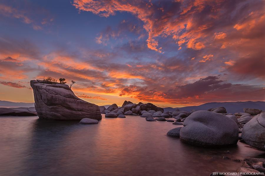 "Today's Photo Of The Day is ""Bonsai Sunset"" by Jeff Woodard. Location: Lake Tahoe, Nevada."