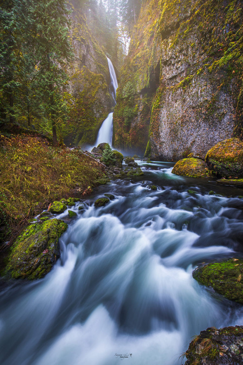 "Today's Photo Of The Day is ""A Flowing Dream"" by Sayan Ghosh. Location: Columbia River Gorge, Oregon."