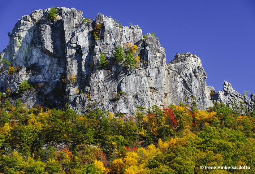 Fall color in West Virginia: Seneca Rocks