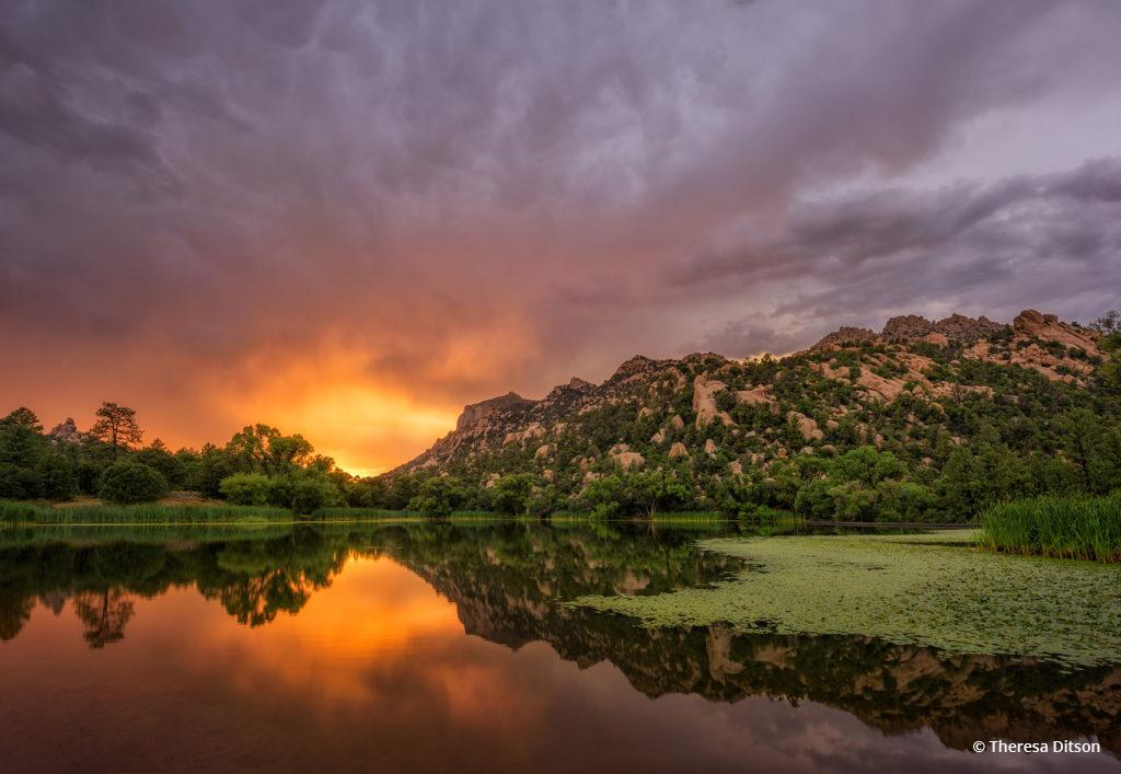"Today's Photo Of The Day is ""Orange Burst"" by Theresa Ditson. Location: Near Prescott, Arizona."