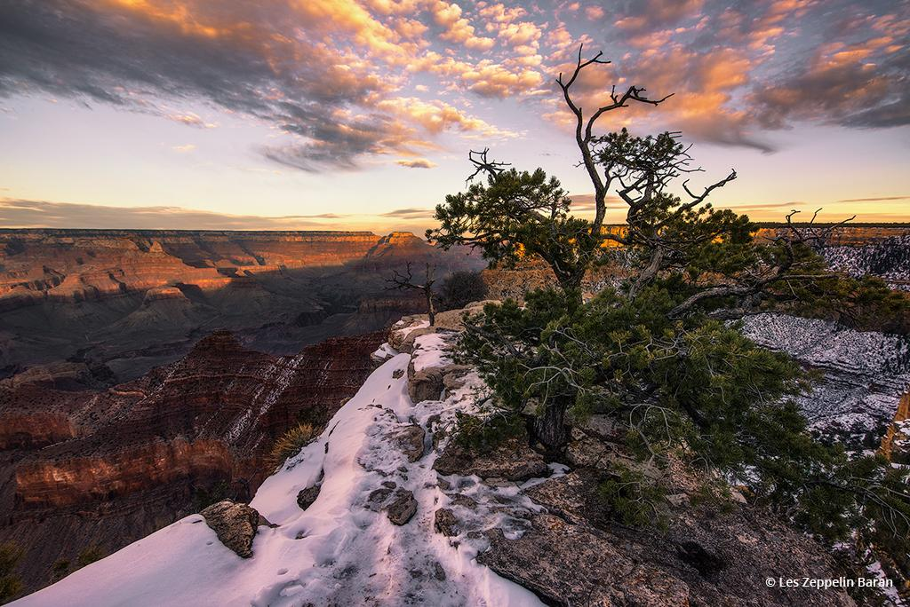 """Today's Photo Of The Day is """"Living on the Edge"""" by Les Zeppelin Baran. Location: Grand Canyon National Park, Arizona."""