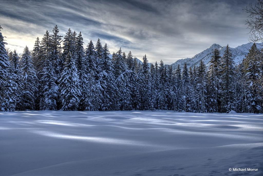 """Today's Photo Of The Day is """"Afternoon's Winter Delight"""" By Michael Morse. Location: Wyoming."""