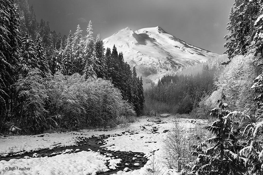 "Today's Photo Of The Day is ""The Snow King"" by Bob Faucher. Location: Mt. Baker-Snoqualmie National Forest, Washington."