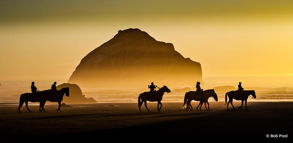 """Today's Photo Of The Day is """"A beach ride at sunset"""" by Bob Pool. Location: Bandon, Oregon."""