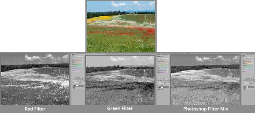 Effects of different filter settings in Photoshop when converting to black-and-white are shown