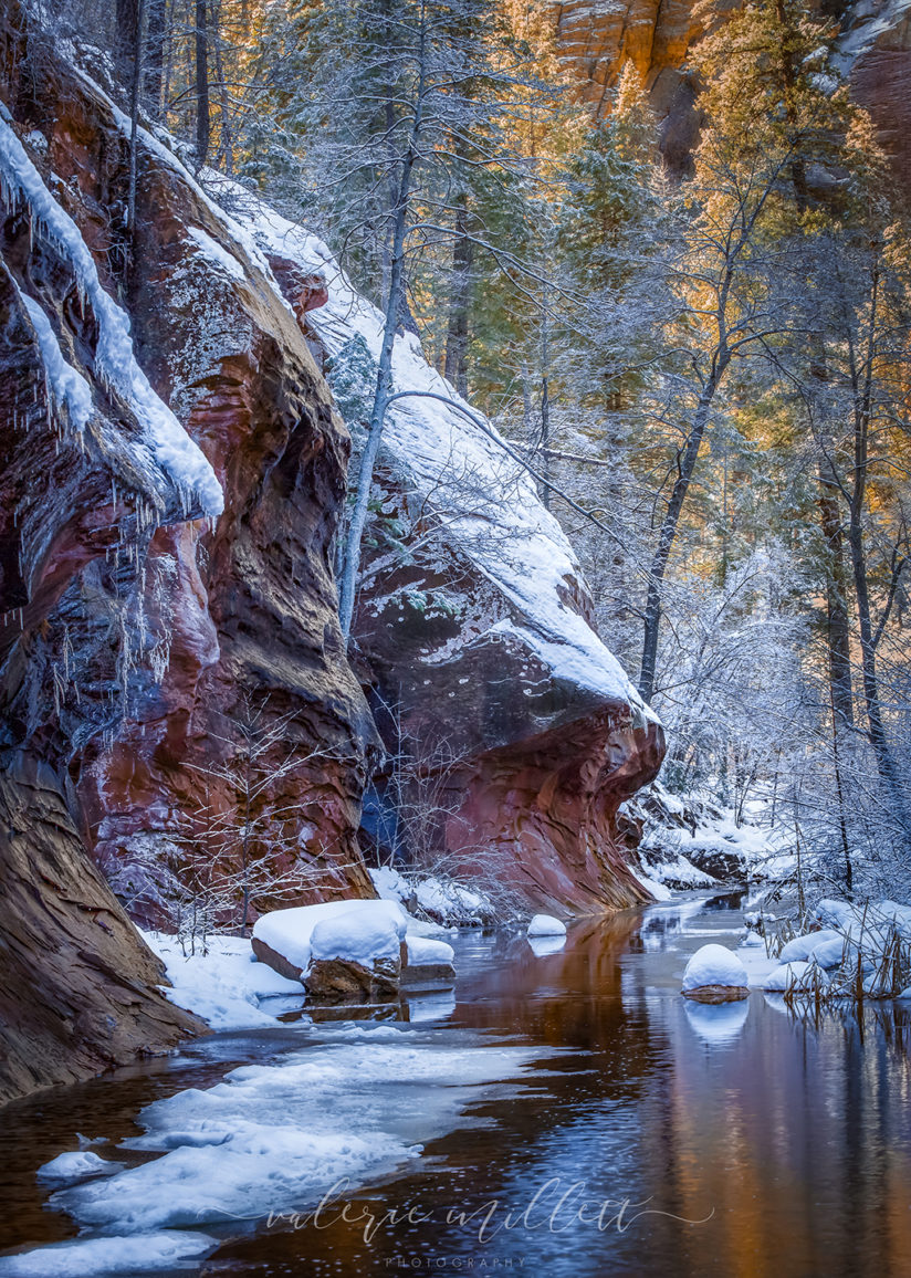 "Today's Photo Of The Day is ""Sonoran Winter"" by Valerie Millett. Location: Oak Creek Canyon, Sedona, Arizona."