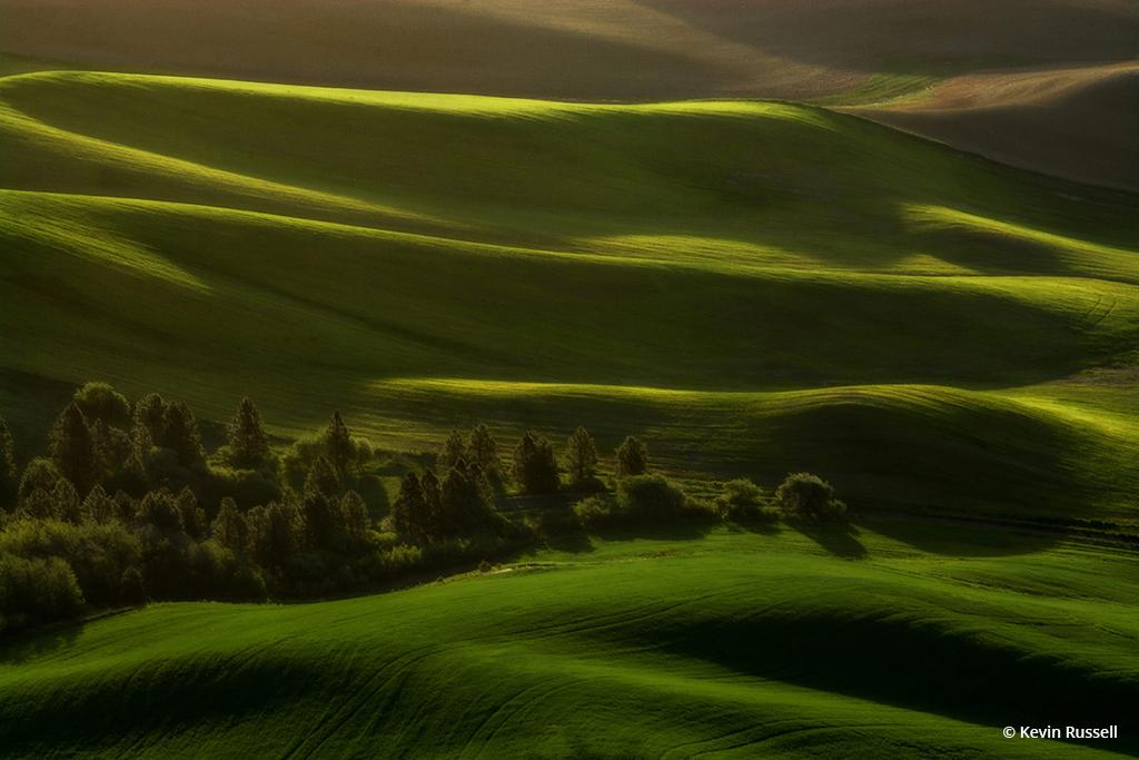 """Today's Photo Of The Day is """"Waves of Green"""" by Kevin Russell. Location: Steptoe Butte, Washington."""