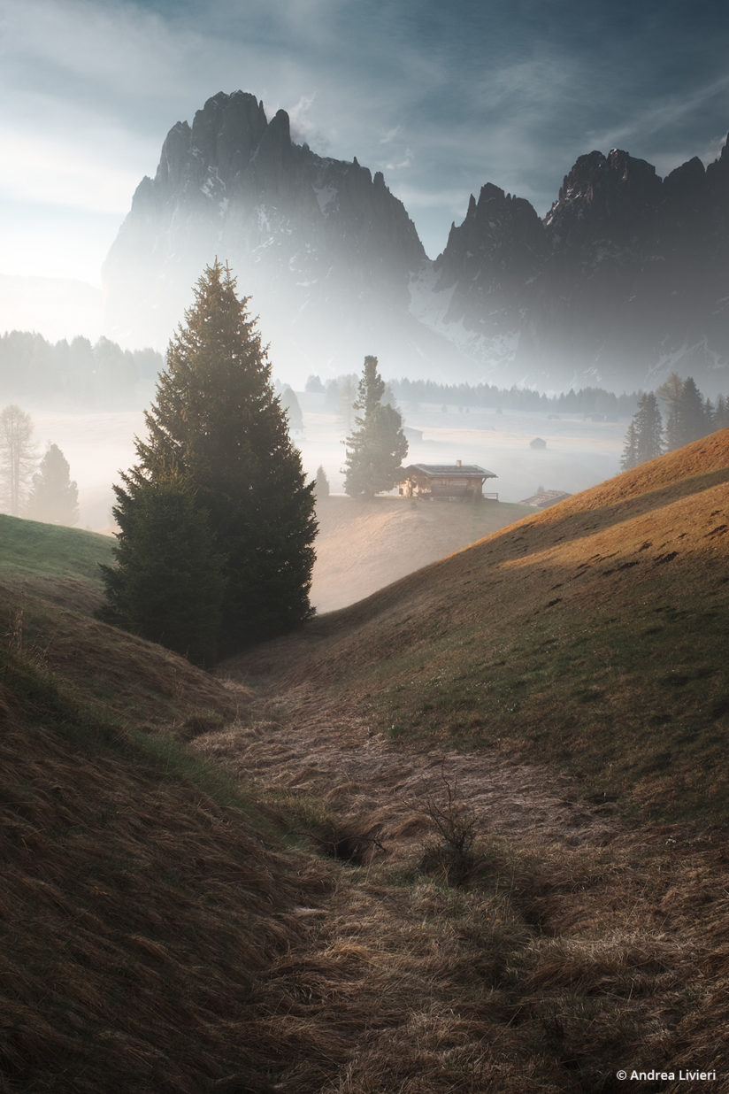 "Today's Photo Of The Day is ""First lights in Seiser Alm"" by Andrea Livieri. Location: Seiser Alm, Dolomites mountain range, Italy."