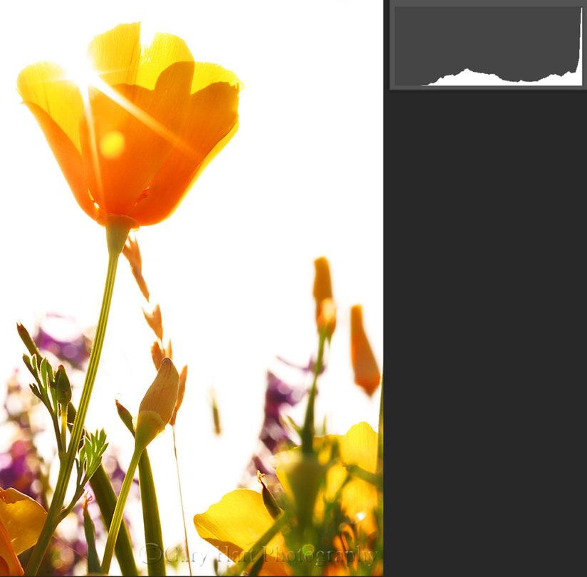 How to use histograms to intentionally overexpose.