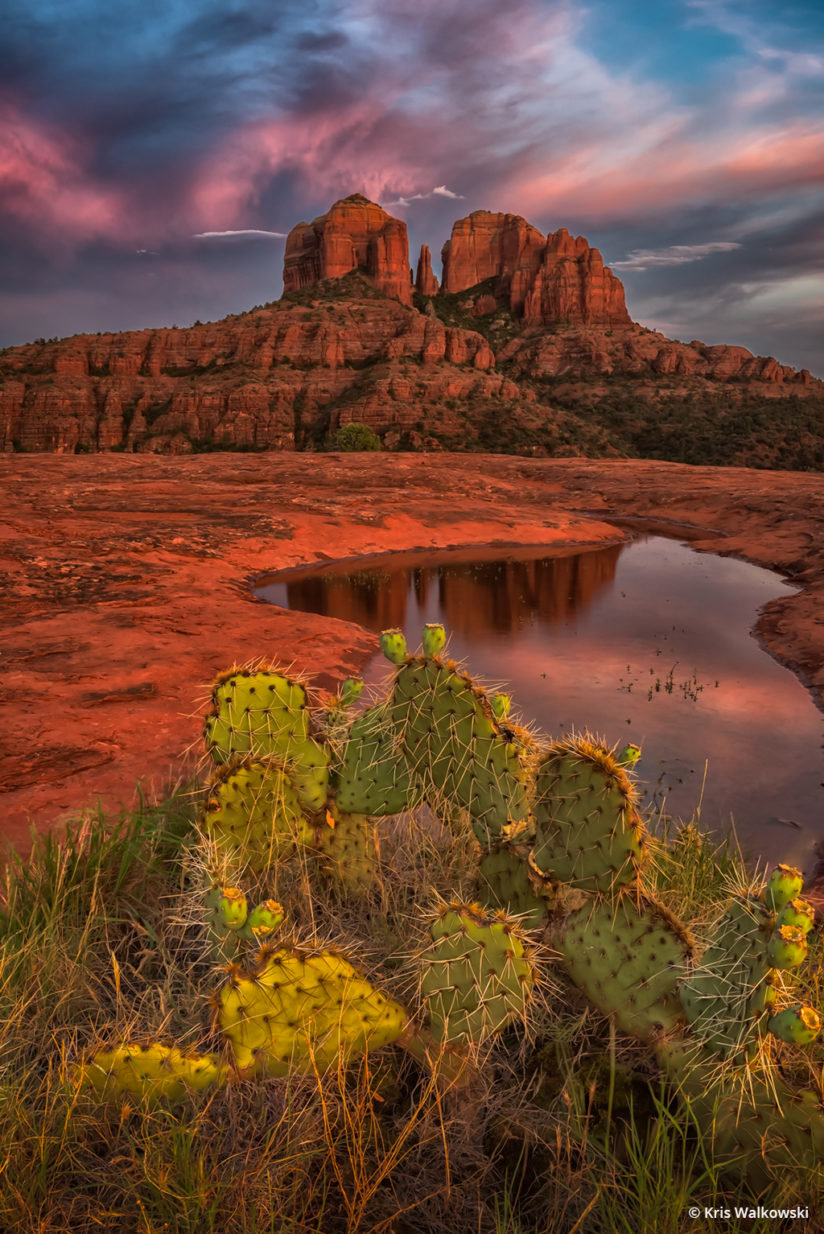 "Today's Photo Of The Day is ""Cathedral"" by Kris Walkowski. Location: Cathedral Rock, Sedona, Arizona."