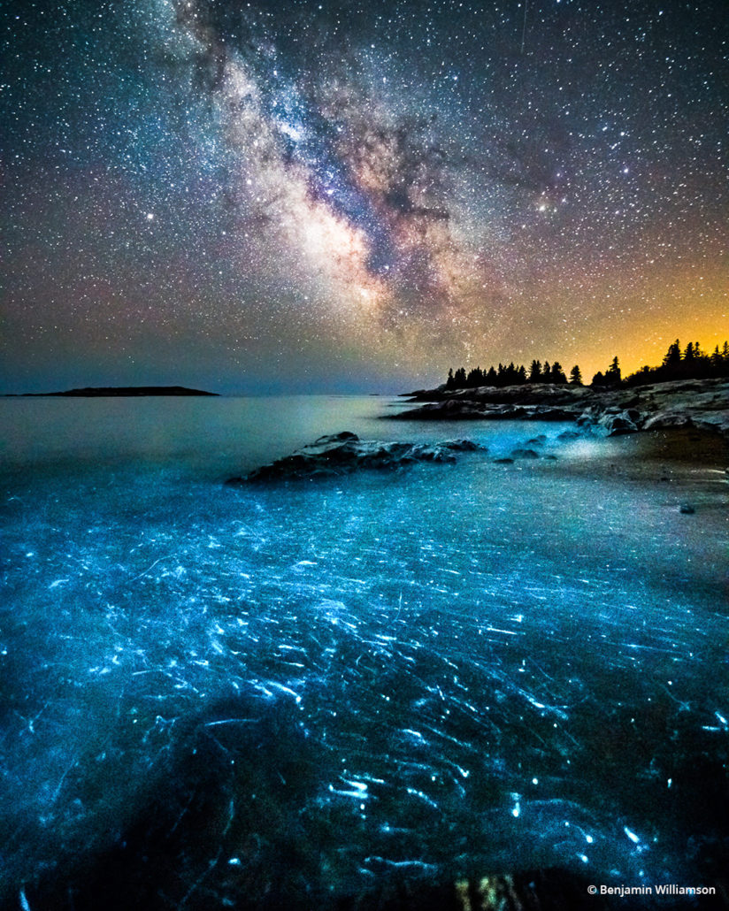 "Today's Photo Of The Day is ""Bioluminescence"" by Benjamin Williamson. Location: Georgetown, Maine."