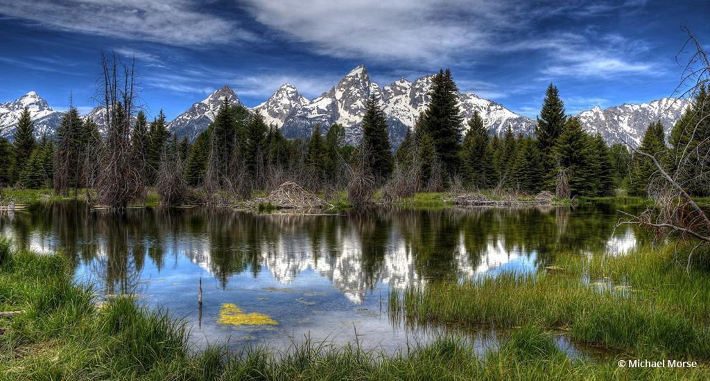 "Today's Photo Of The Day is ""Serene Schwabachers Landing"" by Michael Morse. Location: Grand Teton National Park, Wyoming."