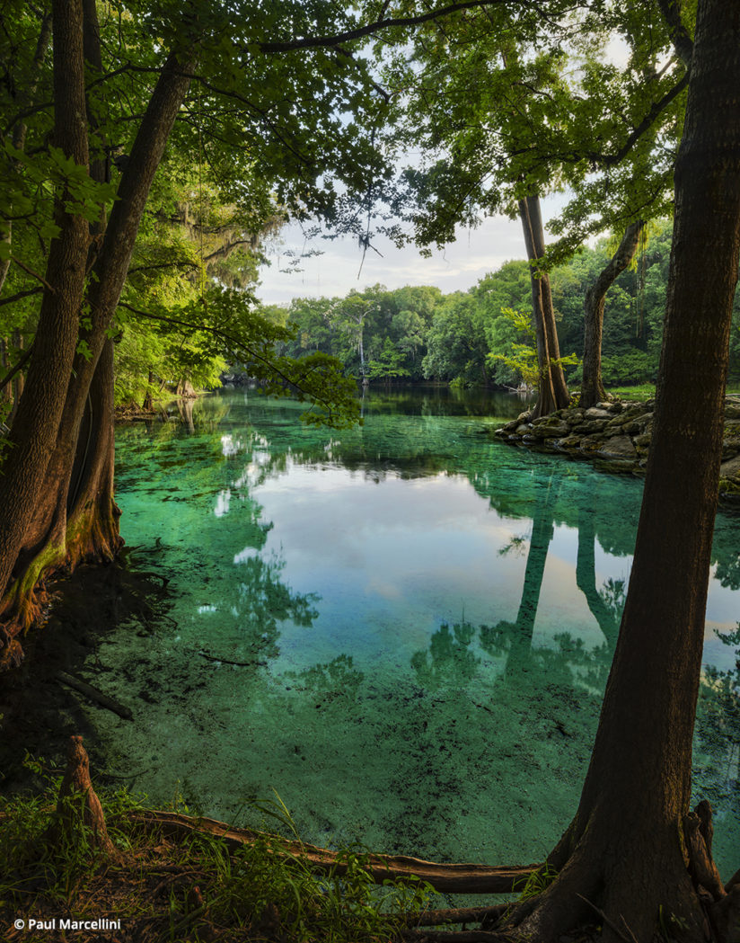 Florida Photo Hot Spots: Ginnie Springs