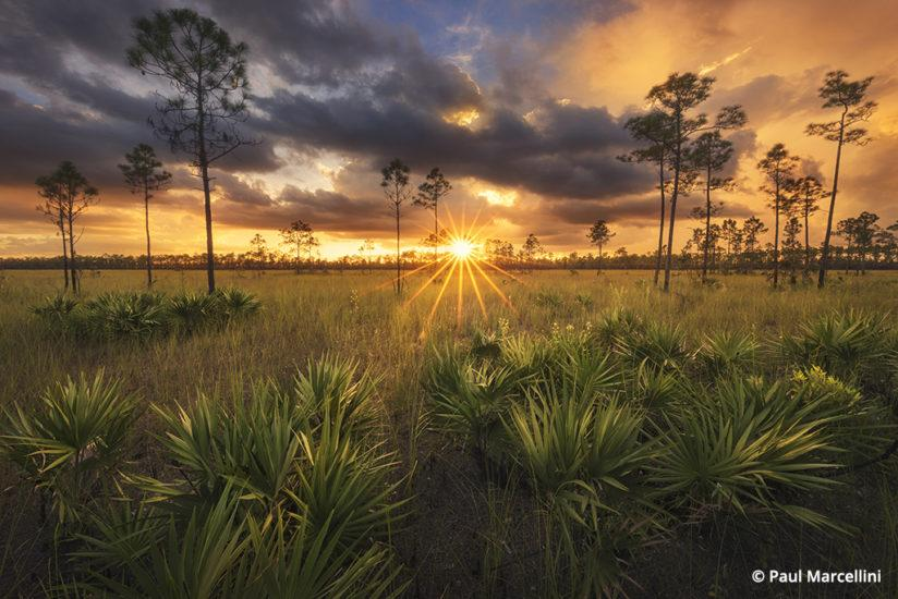 Florida Photo Hot Spots: Everglades National Park