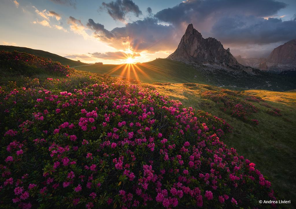 "Today's Photo Of The Day is ""Glorious Lights"" by Andrea Livieri. Location: Passo Giau, Dolomites Natural Park, Italy."