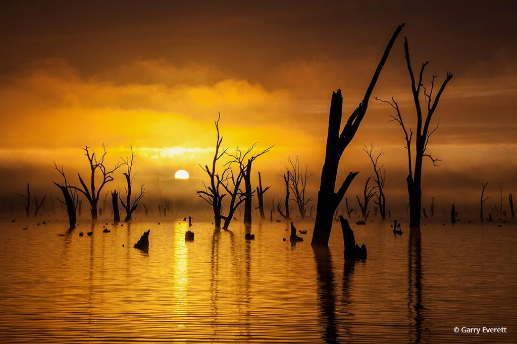 "Today's Photo Of The Day is ""Ghost Gums"" by Garry Everett. Location: Lake Mulwala, New South Wales, Australia."