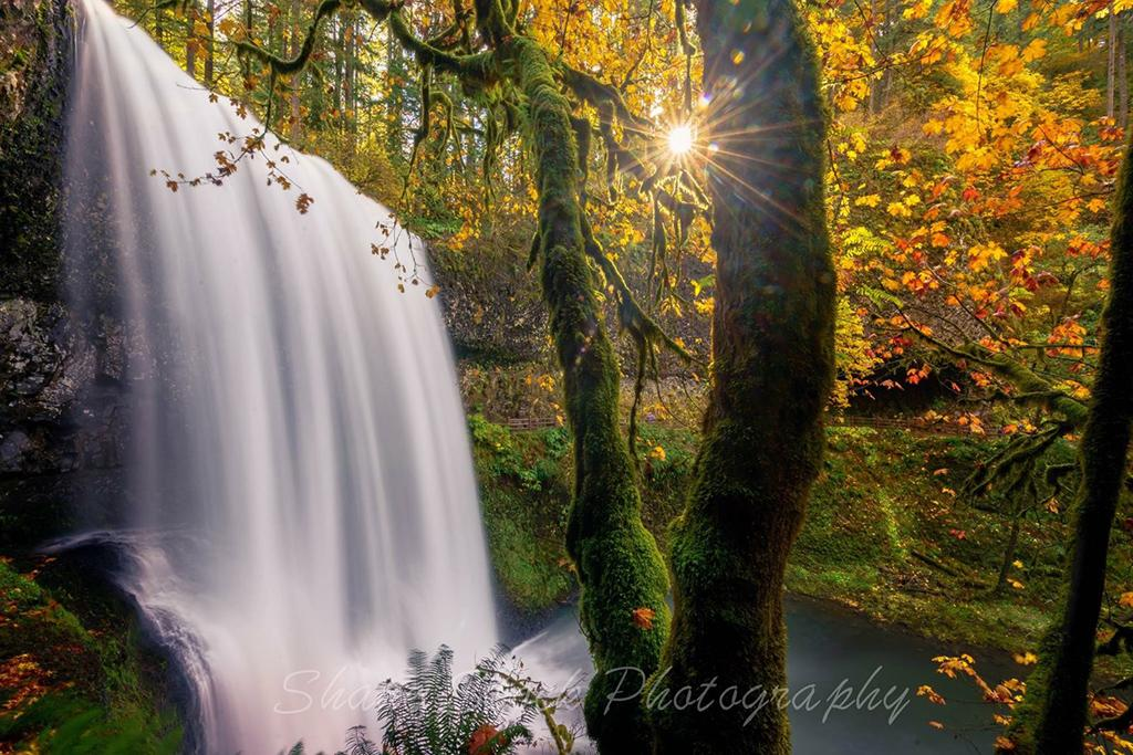 "Today's Photo Of The Day is ""Lower South Falls"" by Shane Stock. Location: Oregon."